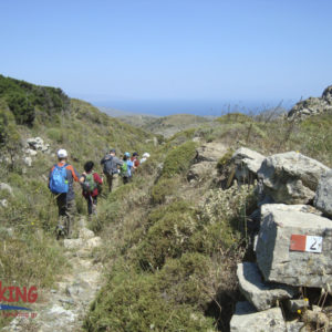 Authentic Islands Hiking (Andros, Tinos) 9