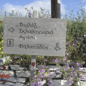 Authentic Islands Hiking (Andros, Tinos) 7