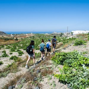 Cooking Class, Easy Hike, and Snorkeling 1