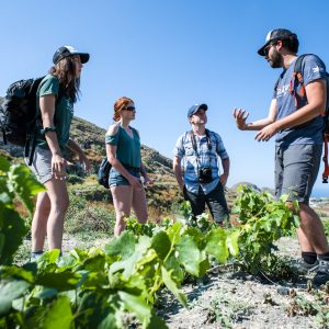 Cooking Class, Easy Hike, and Snorkeling 4