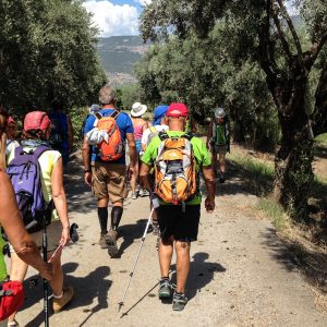 Hike Delphi to Ancient Port of Kirra 3