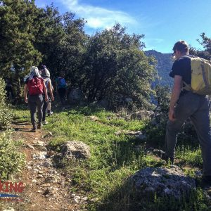 Hike Delphi to Ancient Port of Kirra 6