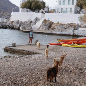 8 Days Sea Kayaking Trip in the Dodecanese Islands 15